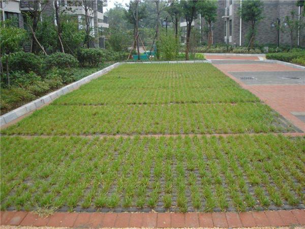 植草砖的价格是多少 植草砖铺设价格费用