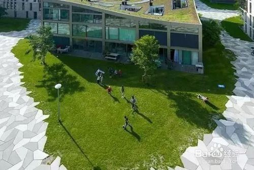 植草地坪做法
